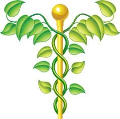 סמל הרפואה המשלימה